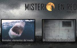 Misterio en Red (4×19): Animales, elementos del miedo – Un caso abierto llamado Jack