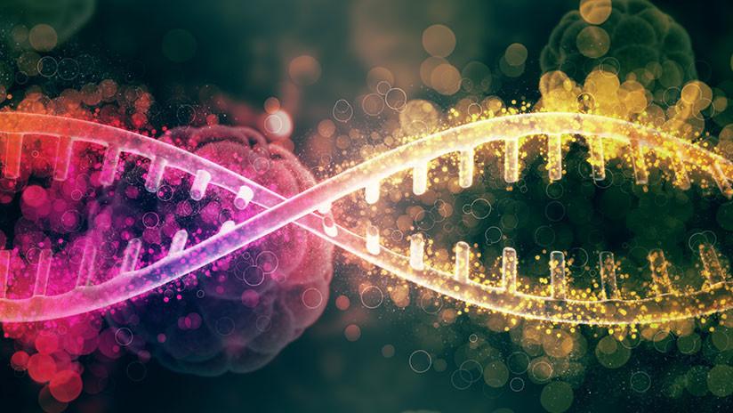 Un grupo de investigadores del Instituto de Tecnología de Massachussets (MIT, por sus siglas en inglés) y de la Universidad de Tecnología y Diseño de Singapur (SUTD, por sus siglas en inglés) ha descubierto que la velocidad de las supercomputadoras podría aumentar mediante el uso de un virus biológico llamado fago M13 que ha sido diseñado genéticamente para conseguir una forma de memoria más eficiente