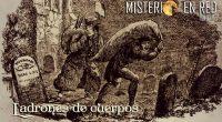 Misterio en Red 6×12): Ladrones de cuerpos