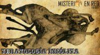Misterio en Red (6×21): Teratología insólita
