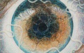 El Huésped: parásitos y bacterias que pueden alterar el comportamiento